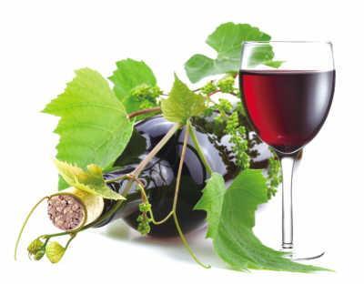 研究发现:餐前喝点红酒能开胃